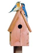 Perky Pet Bluebird Home Cedar Birdhouse
